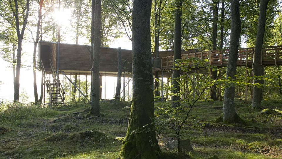 Hovdala Tree house is situated in a beautiful setting in a beech forest.