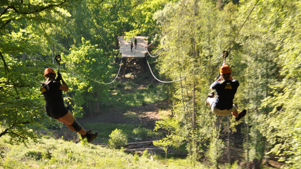 Two persons are ziplining in nice spring forest surroundings