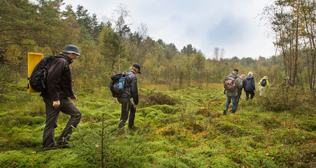 Some hikers walking in wetlands covered with moss.
