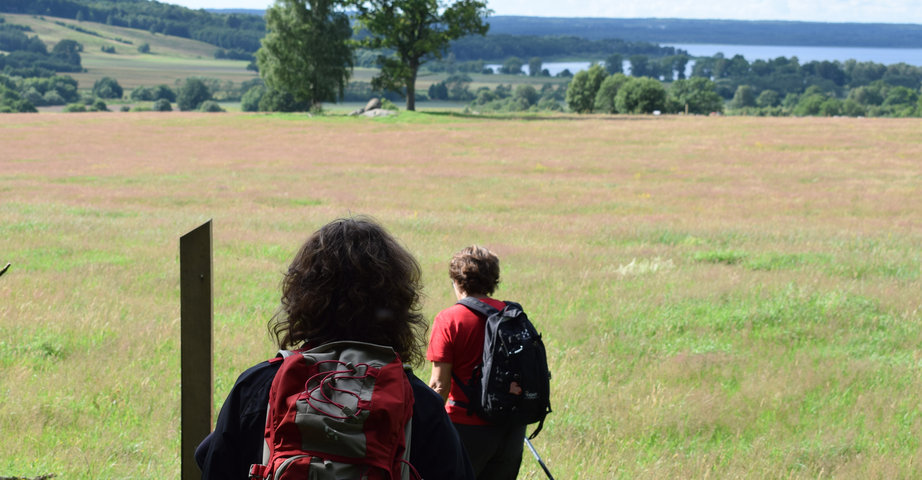Two lady hikers are on their way over a wide heath with a nice view out of the lake.