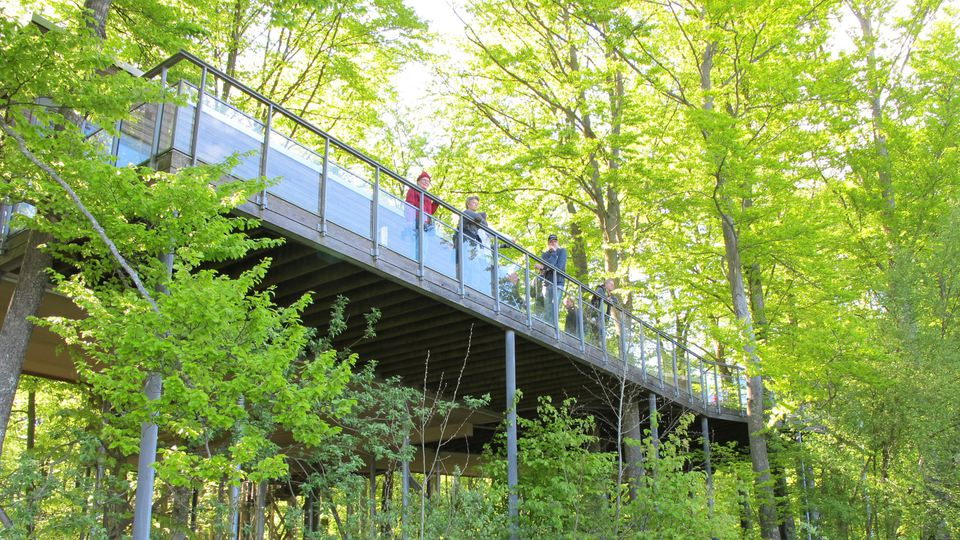 Here you see a few people standing on the veranda of Hovdala Treehouse, watching the nice view out of Finjasjö lake.
