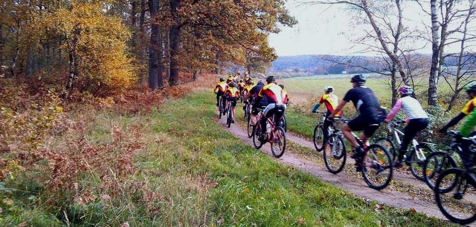 A bunch of cyclists on a small road in autumn with yellow leaves on the trees.